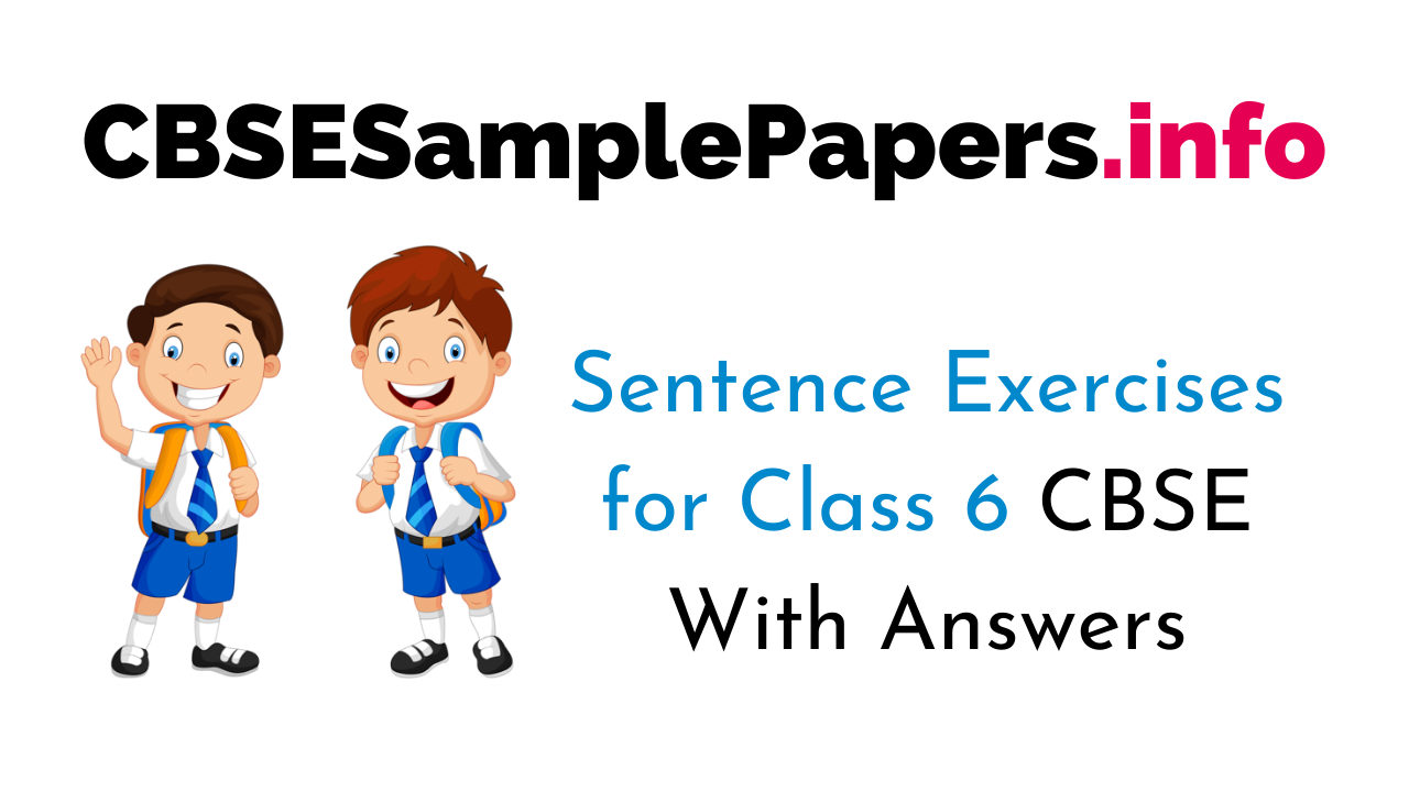 Sentence Exercise for Class 6 CBSE With Answers